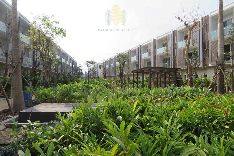 nha pho palm residence tien do